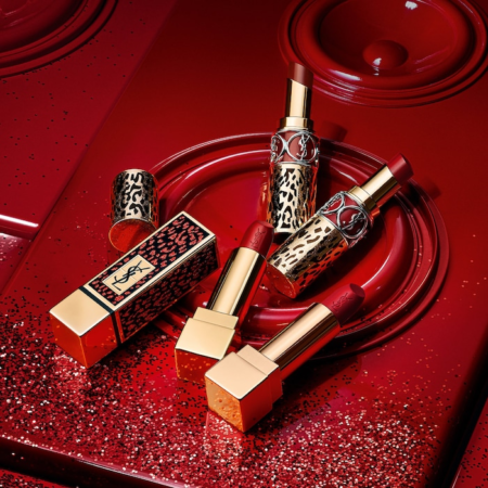 YSL Dress me Wild Holiday Collection